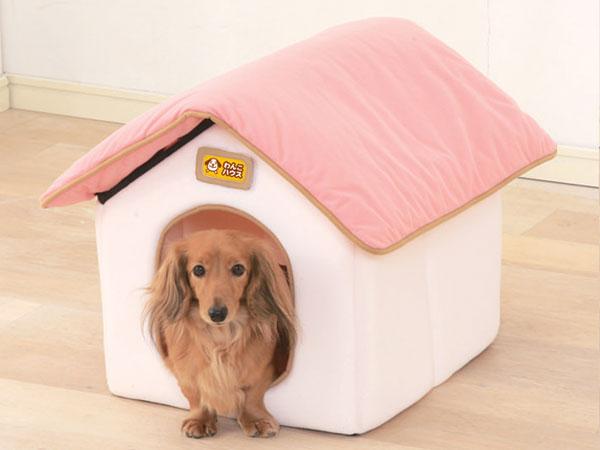 初心者でも大丈夫☆室内で飼いやすい犬の種類、おすすめ7選☆