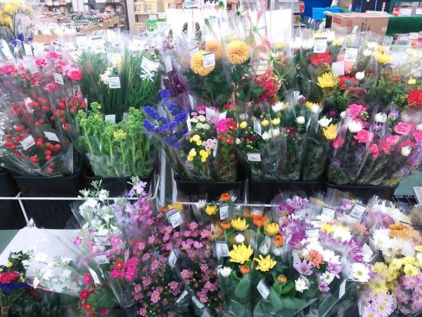 花束を買ったら☆切り花を超長持ちさせる7つのポイント