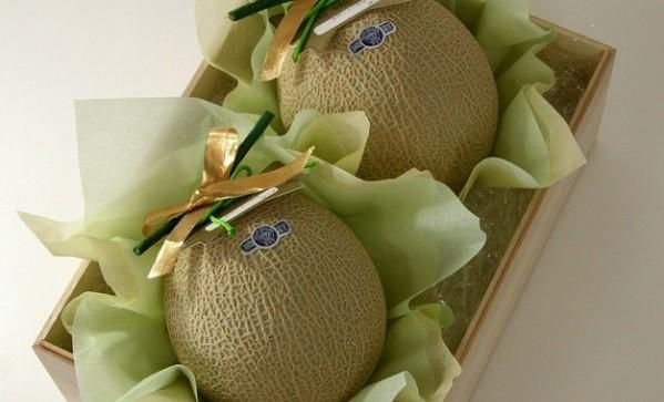 melon-555063_960_720